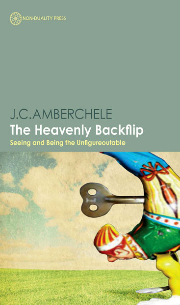 First Chapter Preview: The Heavenly Backflip by J. C. Amberchele