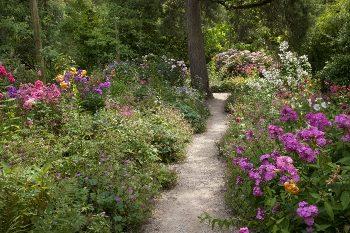 Gravel path through English garden
