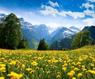 Spring Swiss Mountains (350x263)