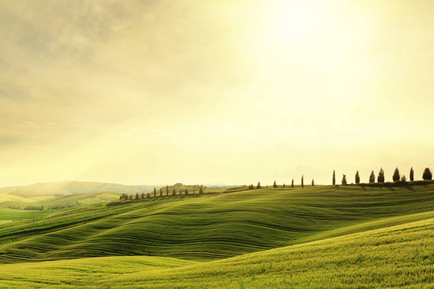 Sunset in Tuscany 896