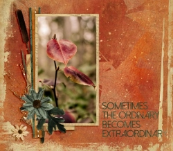 The Ordinary Grows Ever More Extraordinary by Kathleen Sutherland